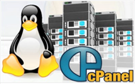 Tính Năng của web Hosting Linux