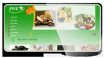 Thiết kế website Cty TNHH SX - XNK Năm Sao